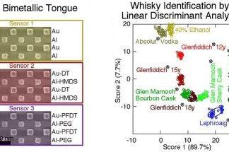Artificial tongue