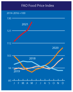 FAO world food price graph