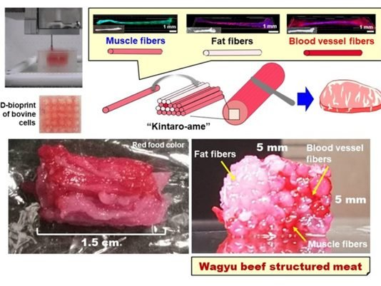 3D Wagyu beef